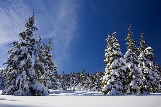 abrigarse para salir a correr con frío – blog despierta y entrena