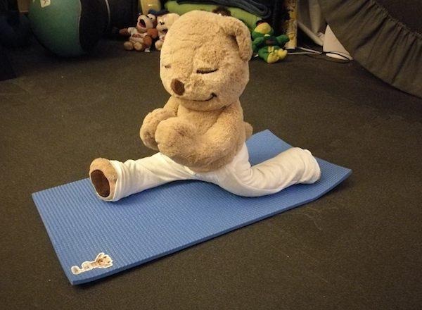 meddy teddy oso yogi